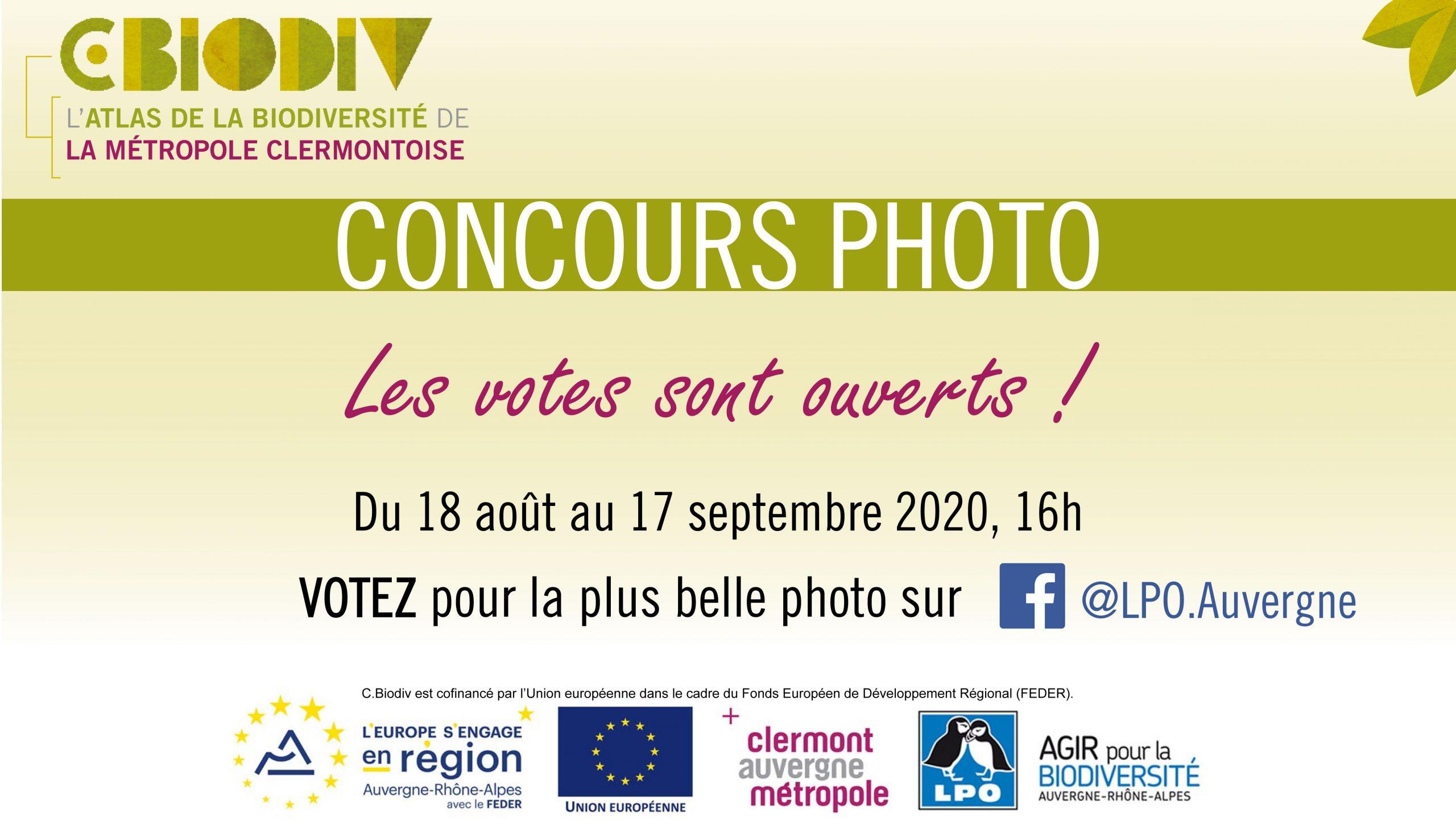 CONCOURS PHOTO DE L'ÉTÉ