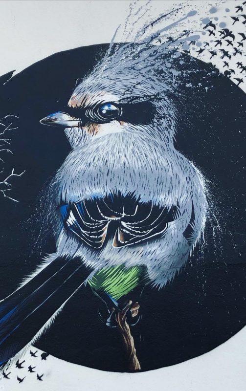 Art & Biodiversité